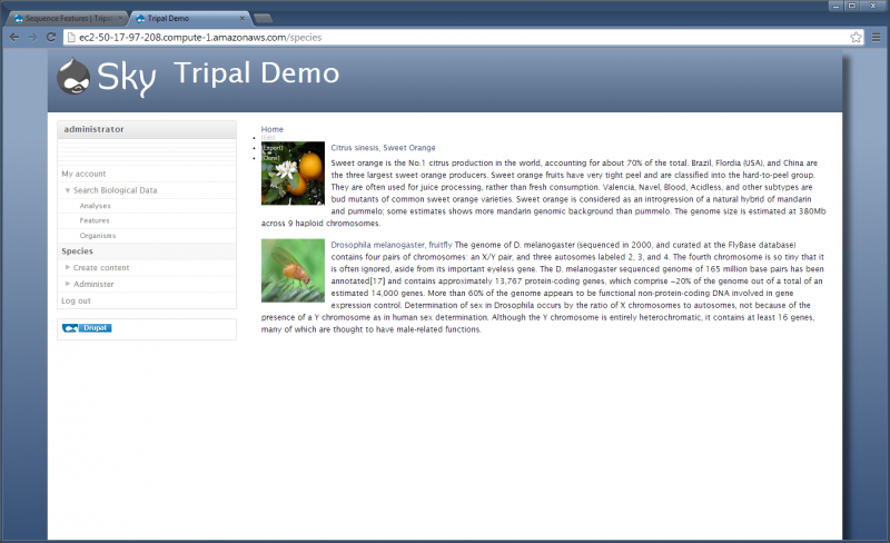 Tripal-v1.1 views new final.png